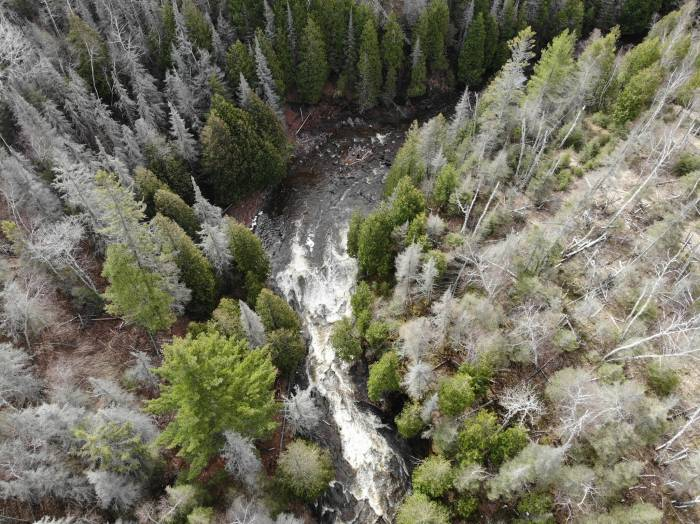 Minnesota North Shore Woods and River Drone Shot