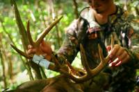 Don't Make These 5 Mistakes Hunting Public Land