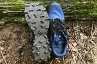 Salomon Wildcross trail running shoe