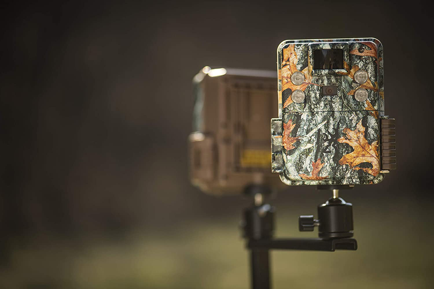 setting a trail camera