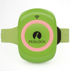 Pealock Electronic Lock