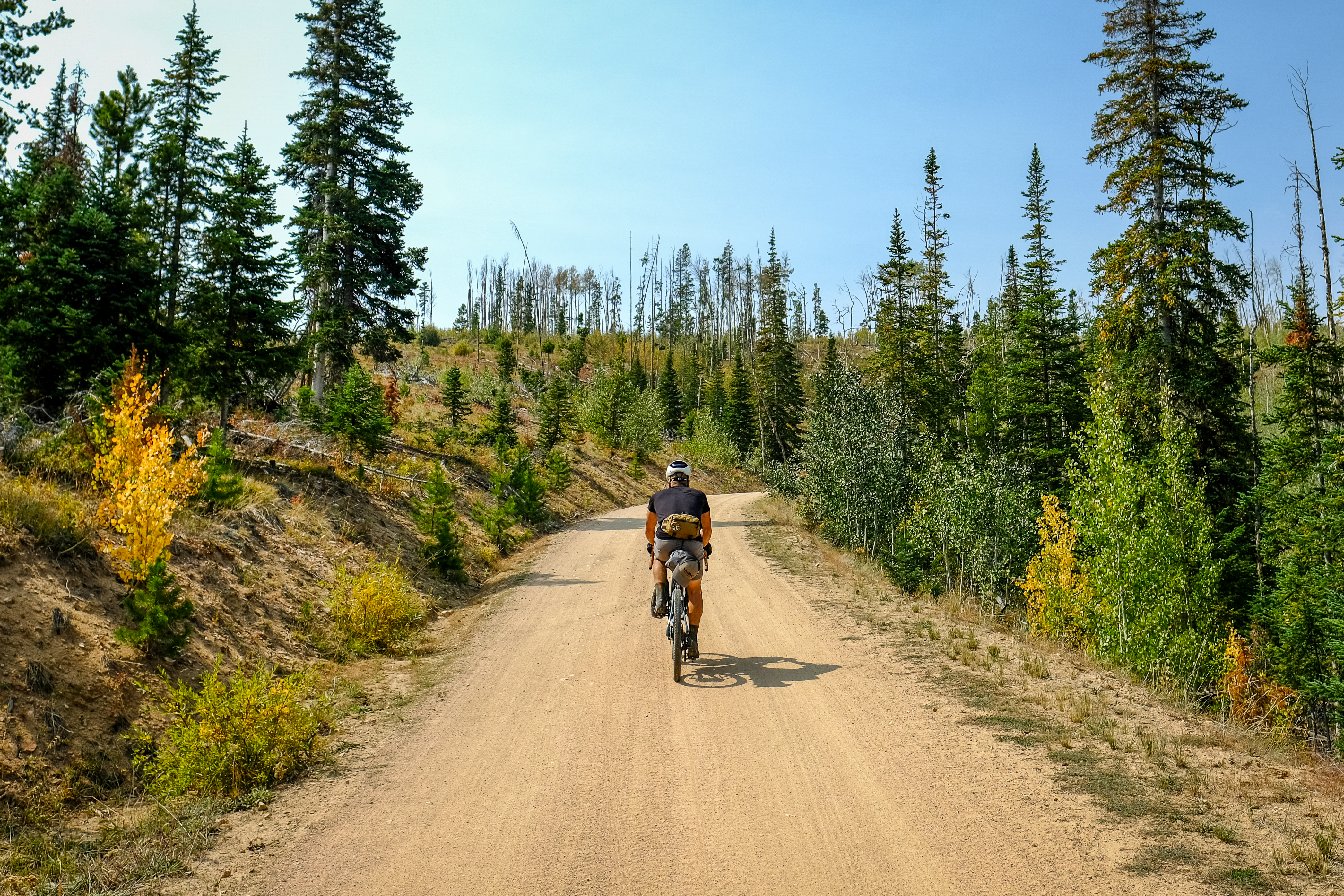 Author bikepacking down center of gravel road