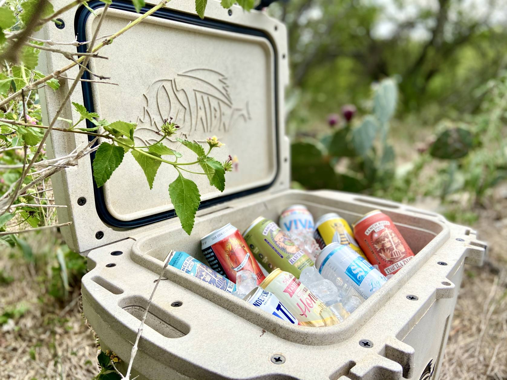 Taiga Terra cooler with drinks
