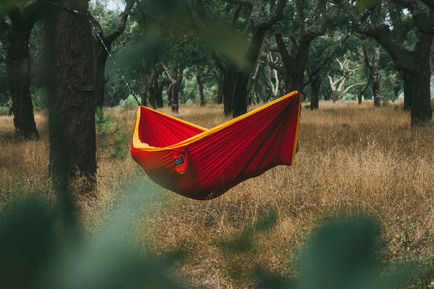 hammock location