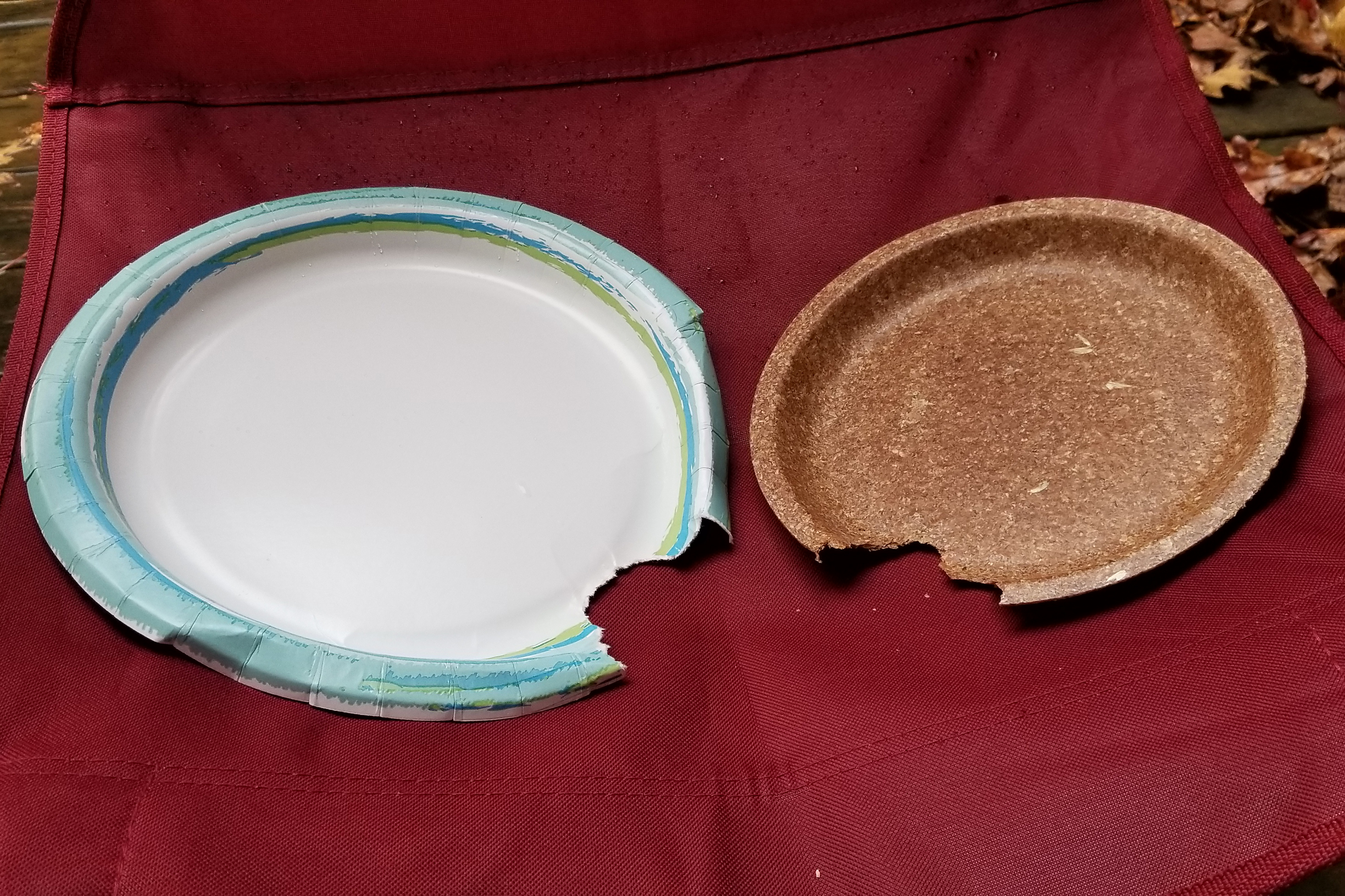 Wheat Bran biodegradable plate
