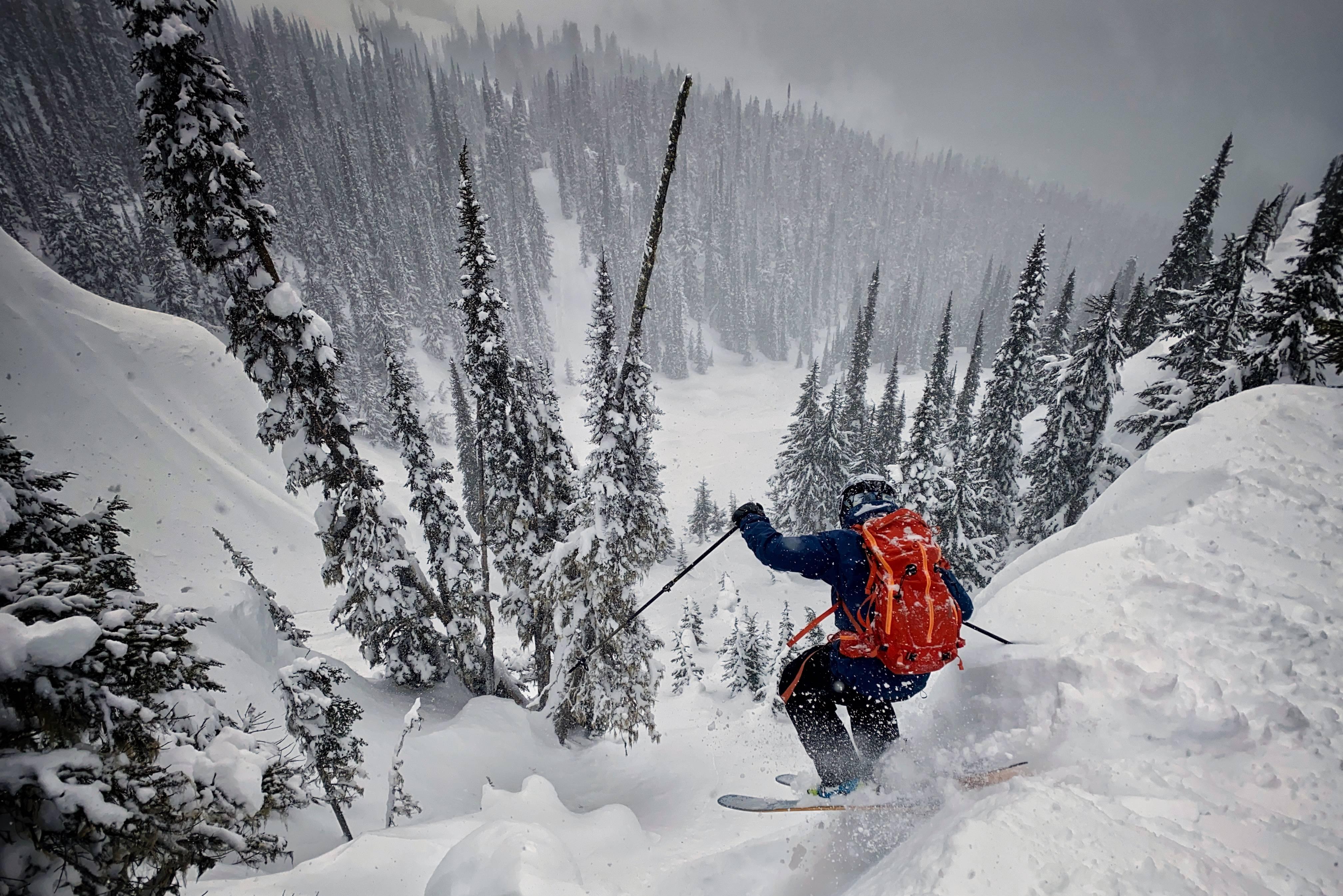 Salomon Backcountry skier
