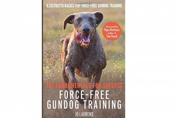 bird dog training, jo laurens