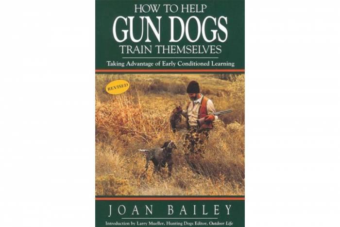 hunting dog training, joan bailey