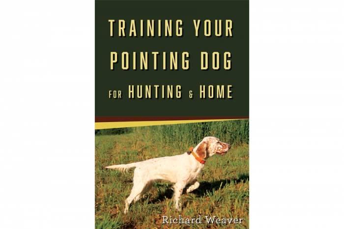 pointing dog training