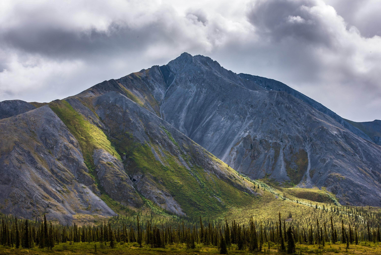 arctic national wildlife refuge oil leases