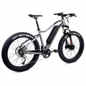 PWR Dually AWD Bike