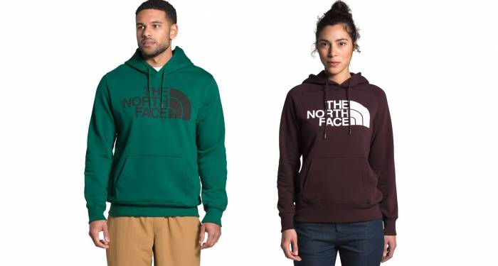 the north face mountain sweatshirt full zip hoodie