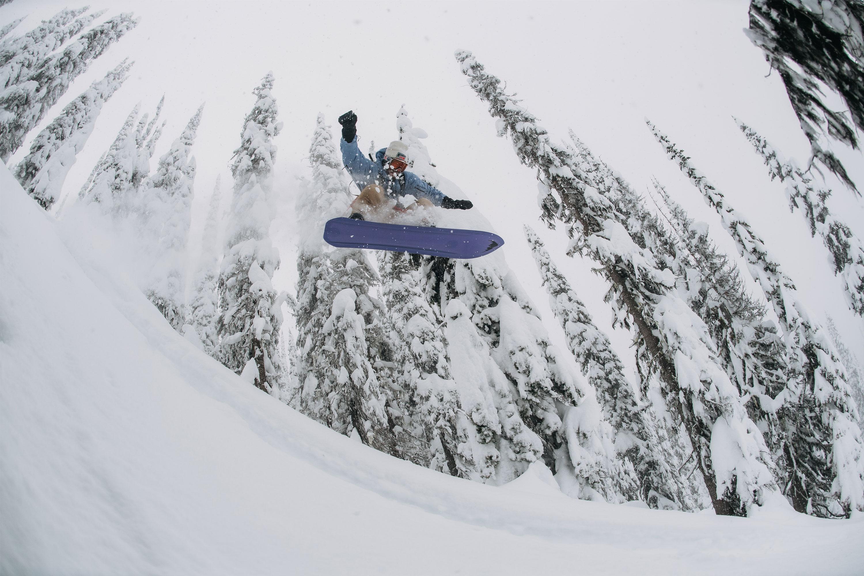 one world family tree backseat snowboard