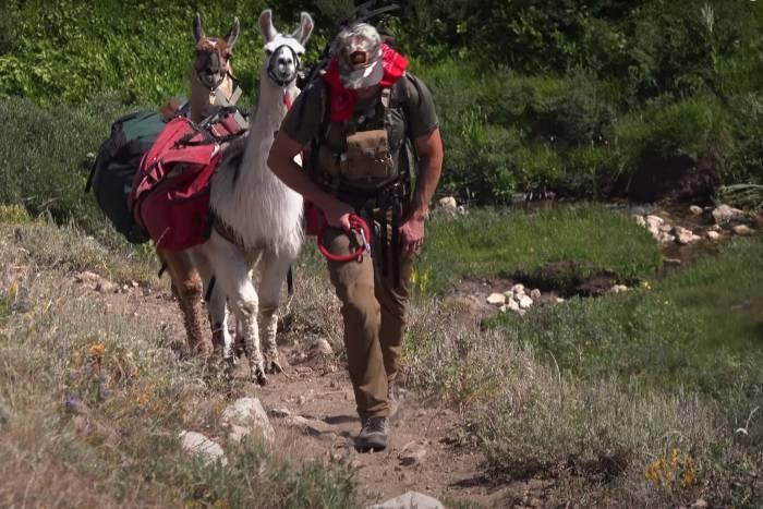 Llamas, Sagebrush, Mule Deer: Check Out a Summer Hunt in Nevada