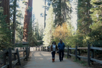 two californian visitors on trail in sequoia national park