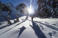 Backcountry Skier Skinning up Mountain 57hours