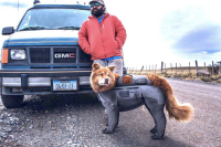 Man in red jacket next to GMC truck with his dog in waders