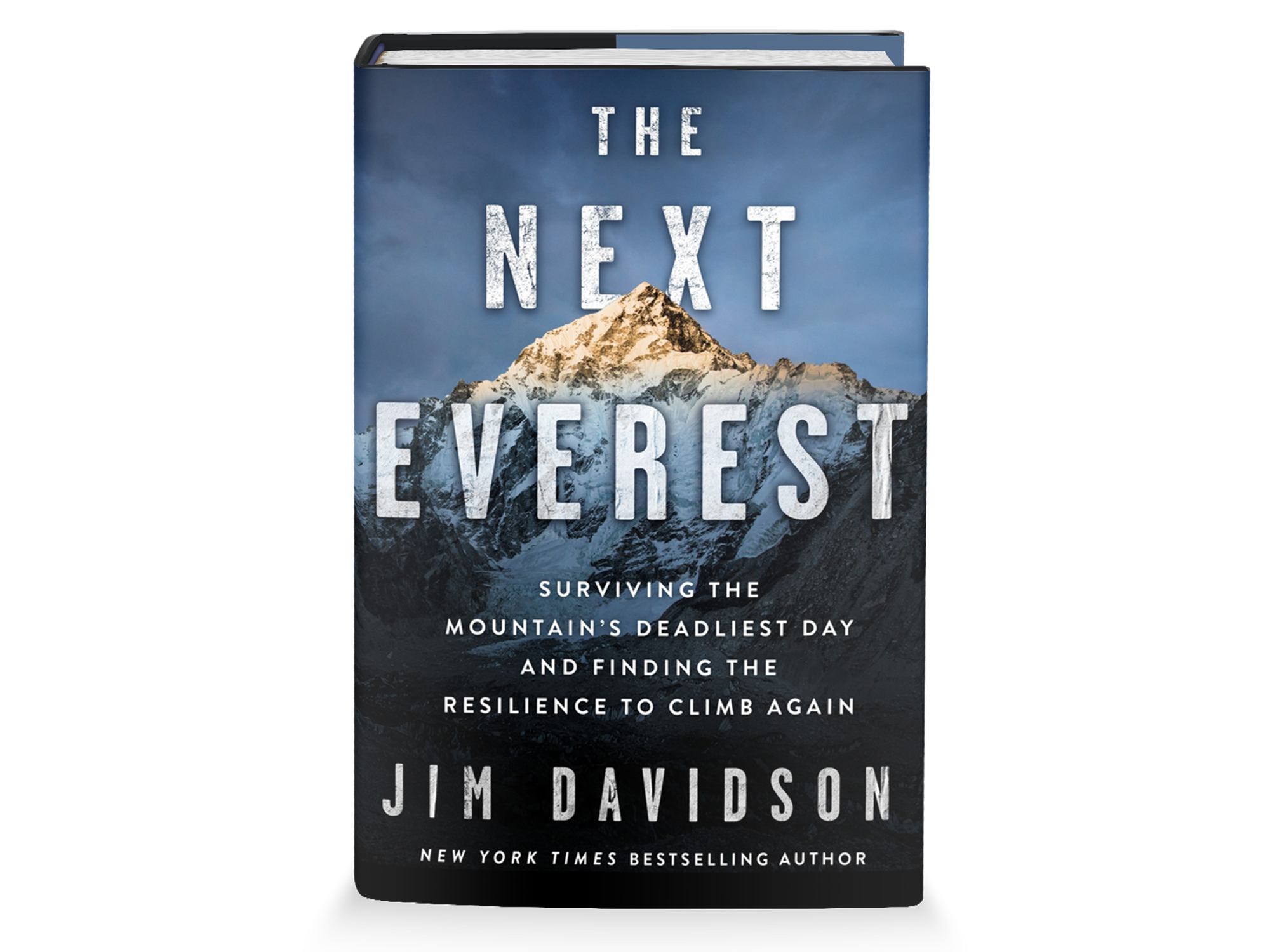 the next everest book cover by jim davidson
