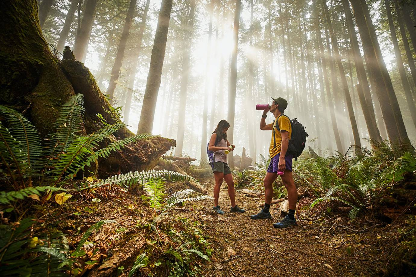 two hikers in shorts on a forest trail