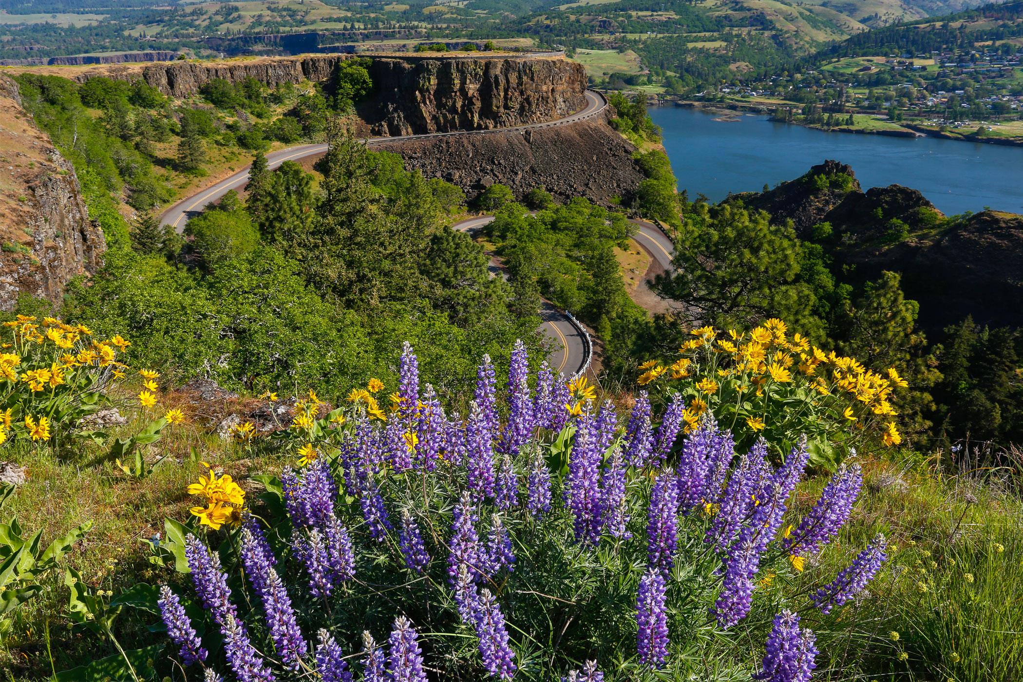 Colombia River scenic back road Oregon