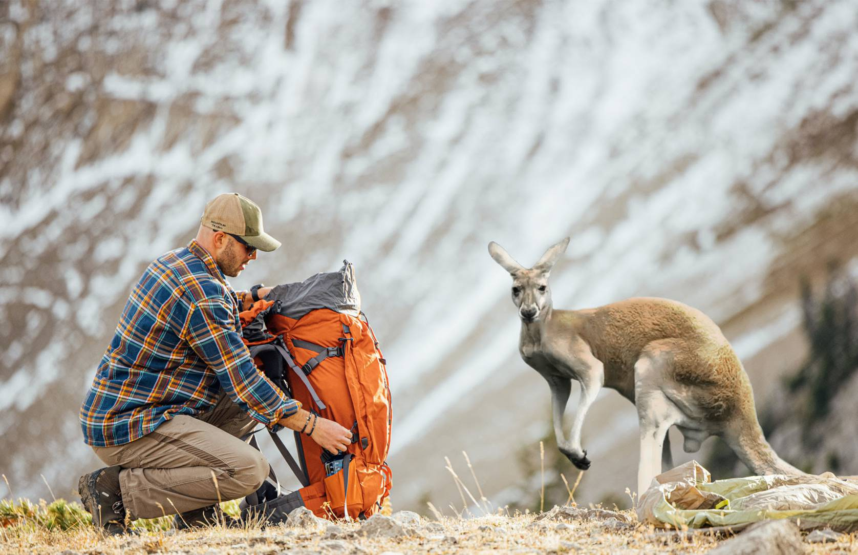 man kneeling next to orange pack facing a kangaroo