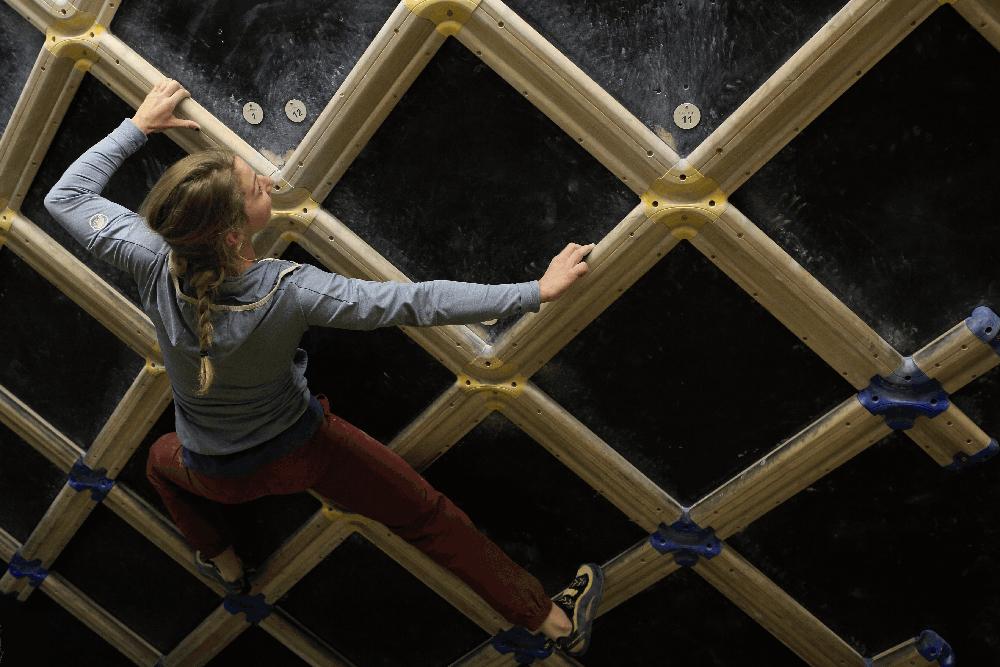 lattice board training