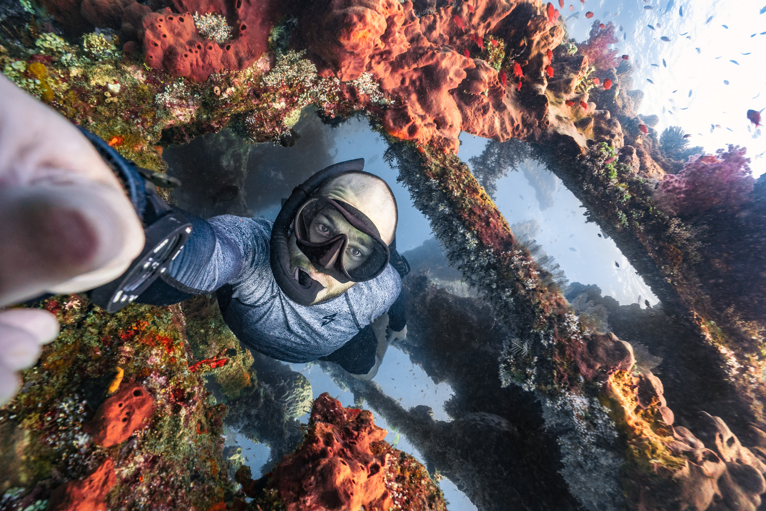 Mike Corey freediving near a colorful reef