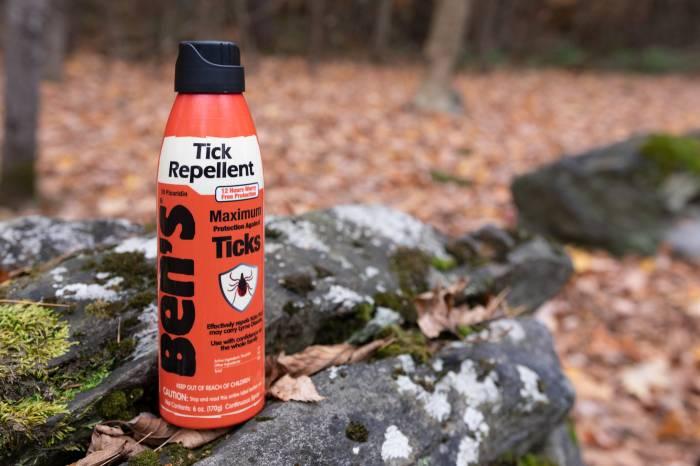 Ben's Tick Repellent - on rock