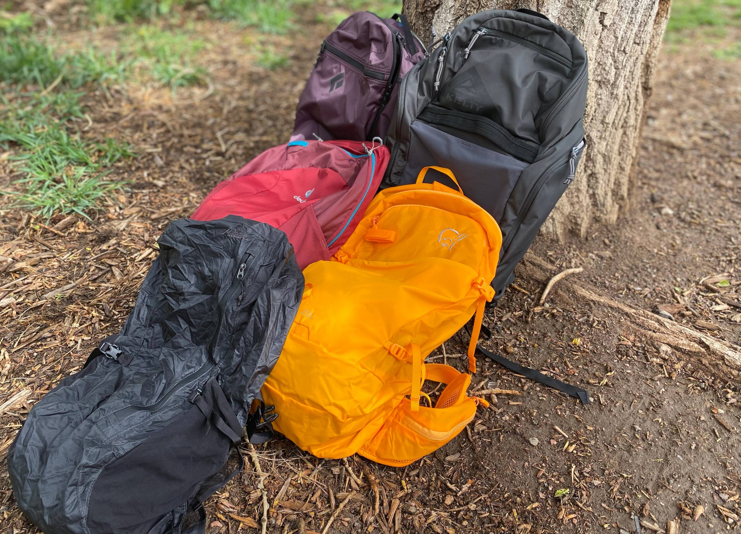 5 different sized and colored daypacks leaning against an oak tree trailside