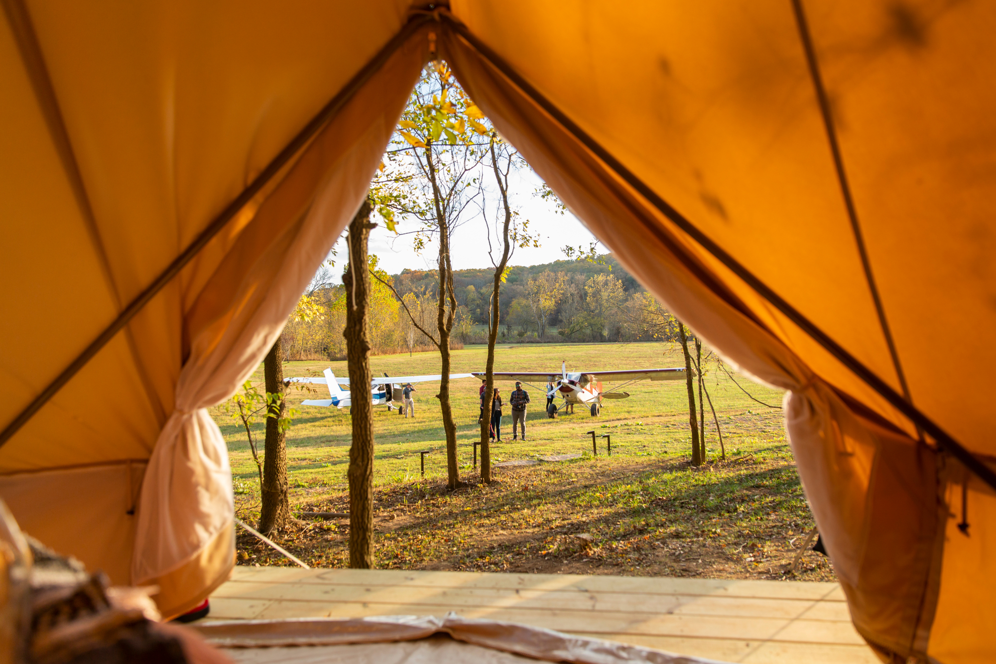 View from a glamping tent in Arkansas.