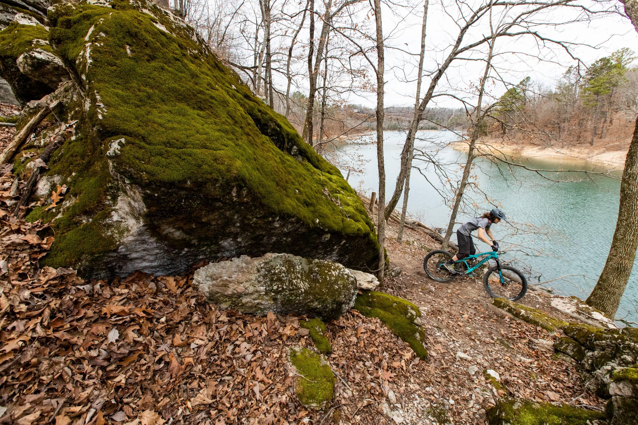 Hobbs-park-singletrack-mountain-biking