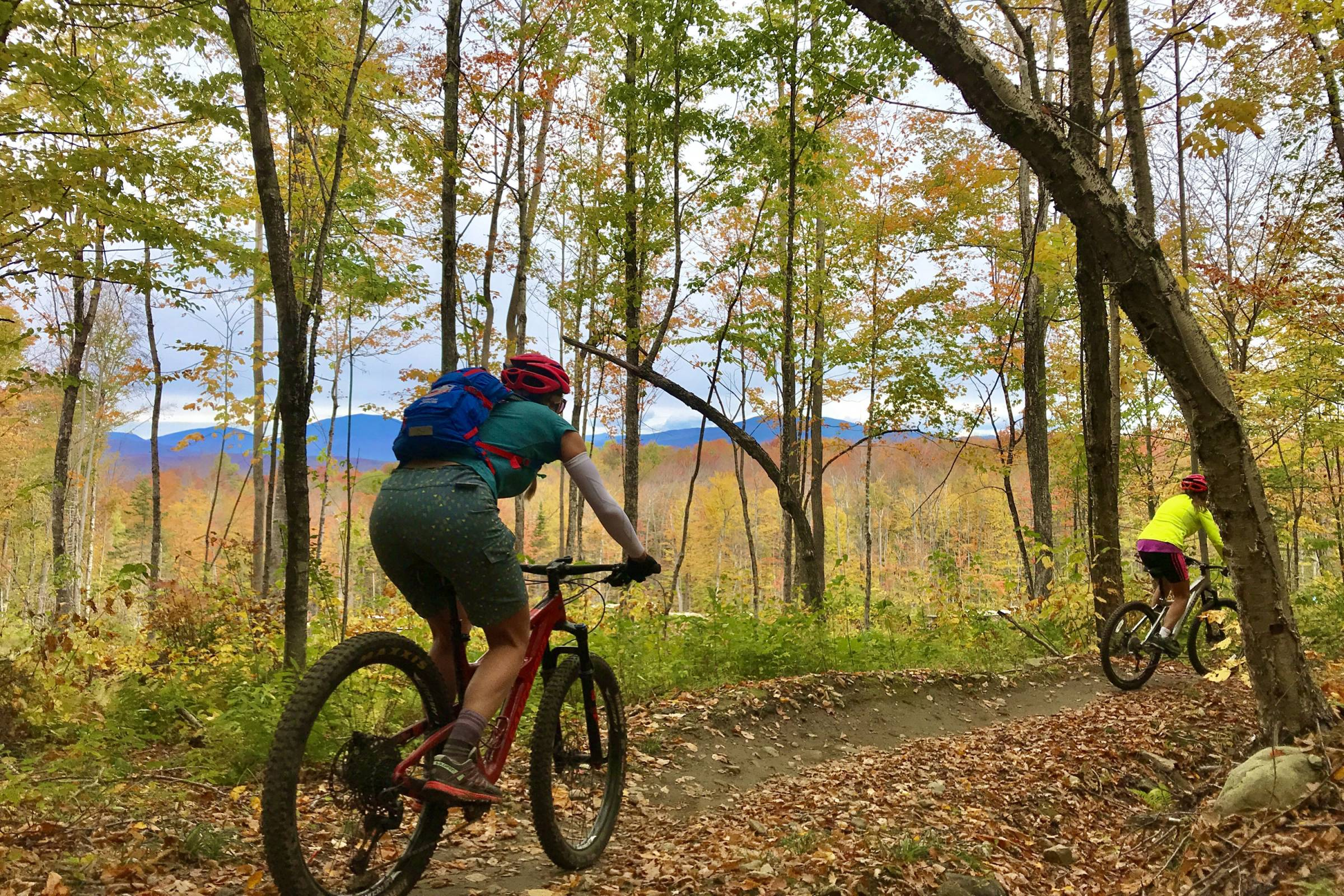 Mountain biking through forest