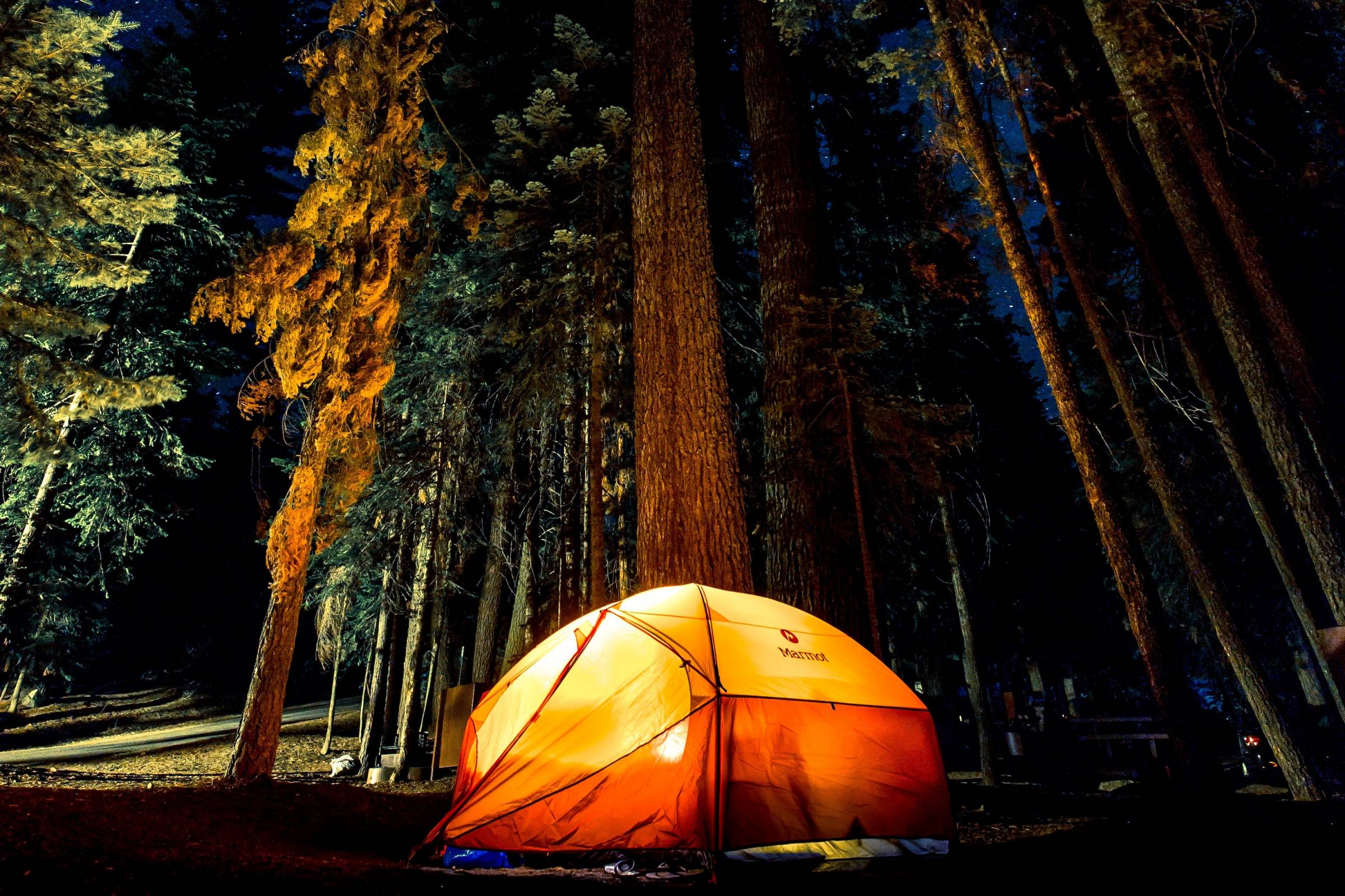 orange tent glowing in forest at night