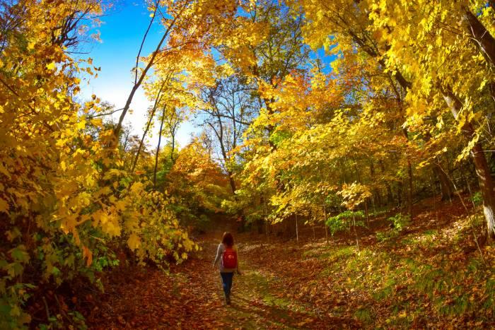 Kensington Runestone Park, Nokke Veien Trail