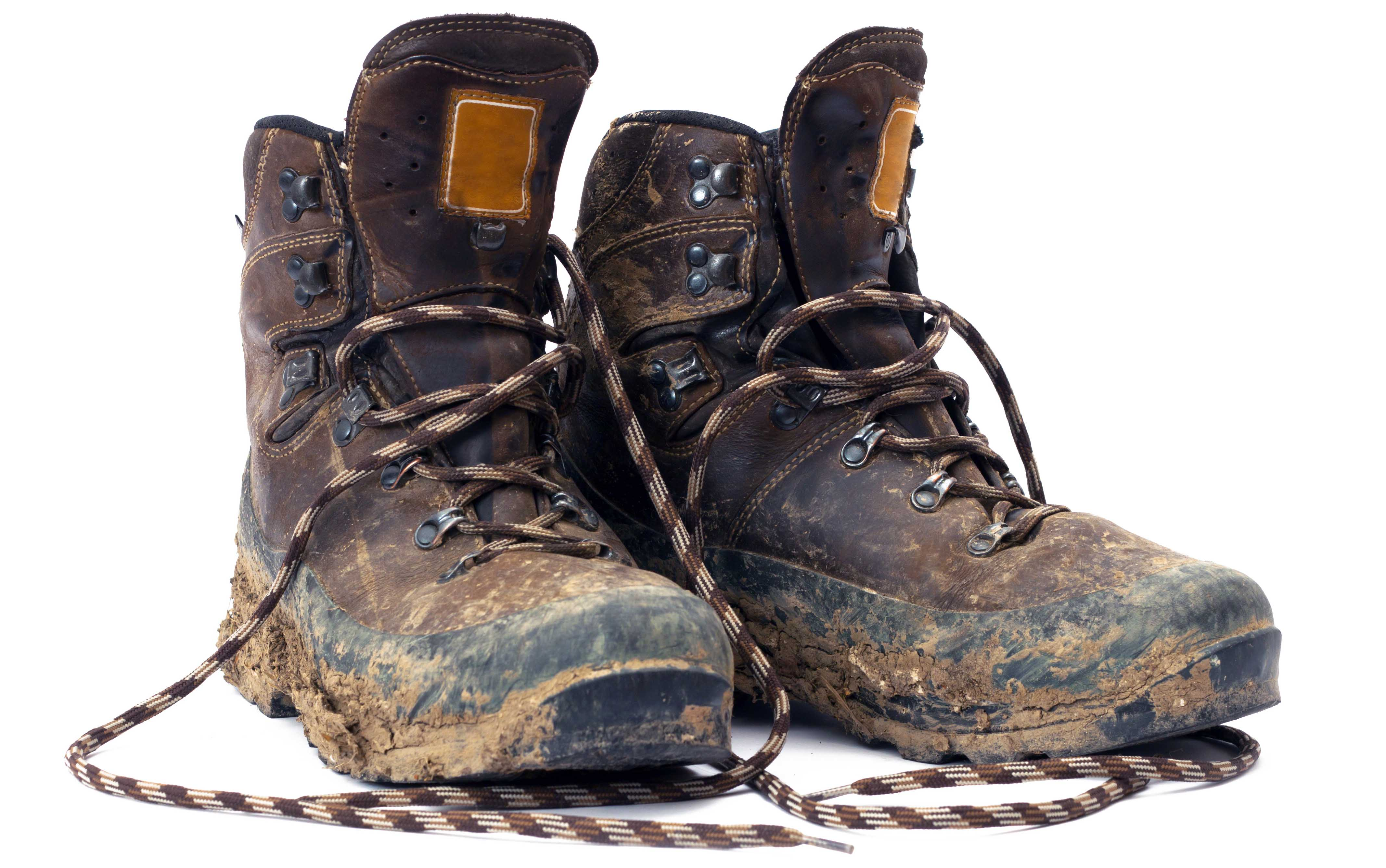hiking boots vs shoes