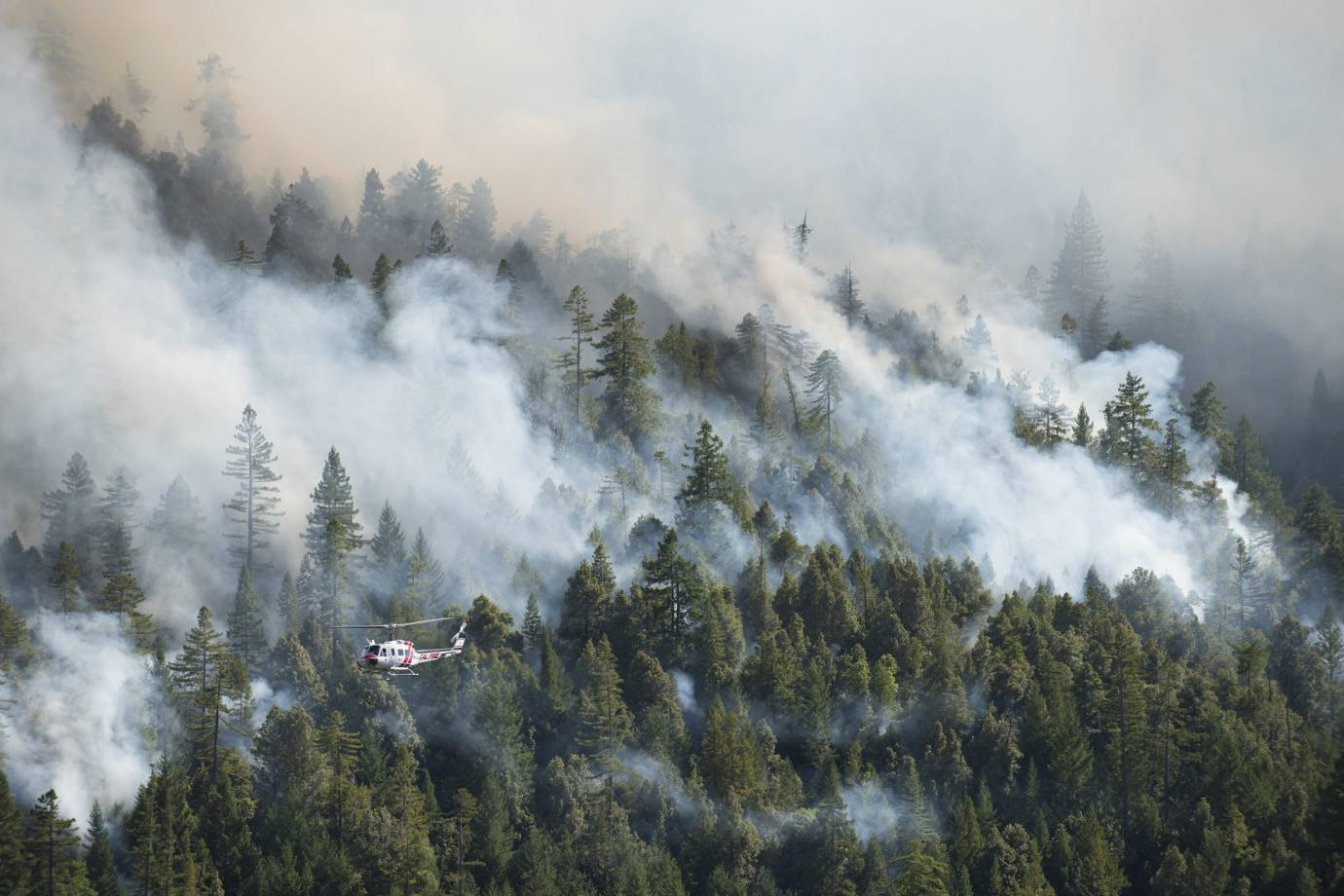 Firefighters survey a large forest fire in Northern California (Photo/N.F. Photography, Shutterstock)
