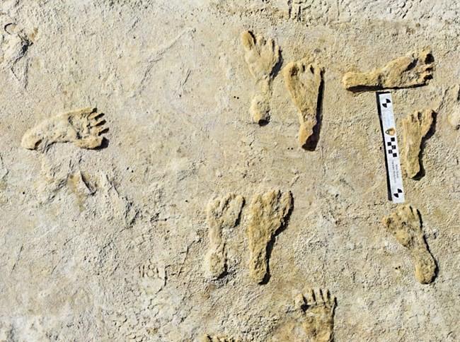 las primeras personas conocidas