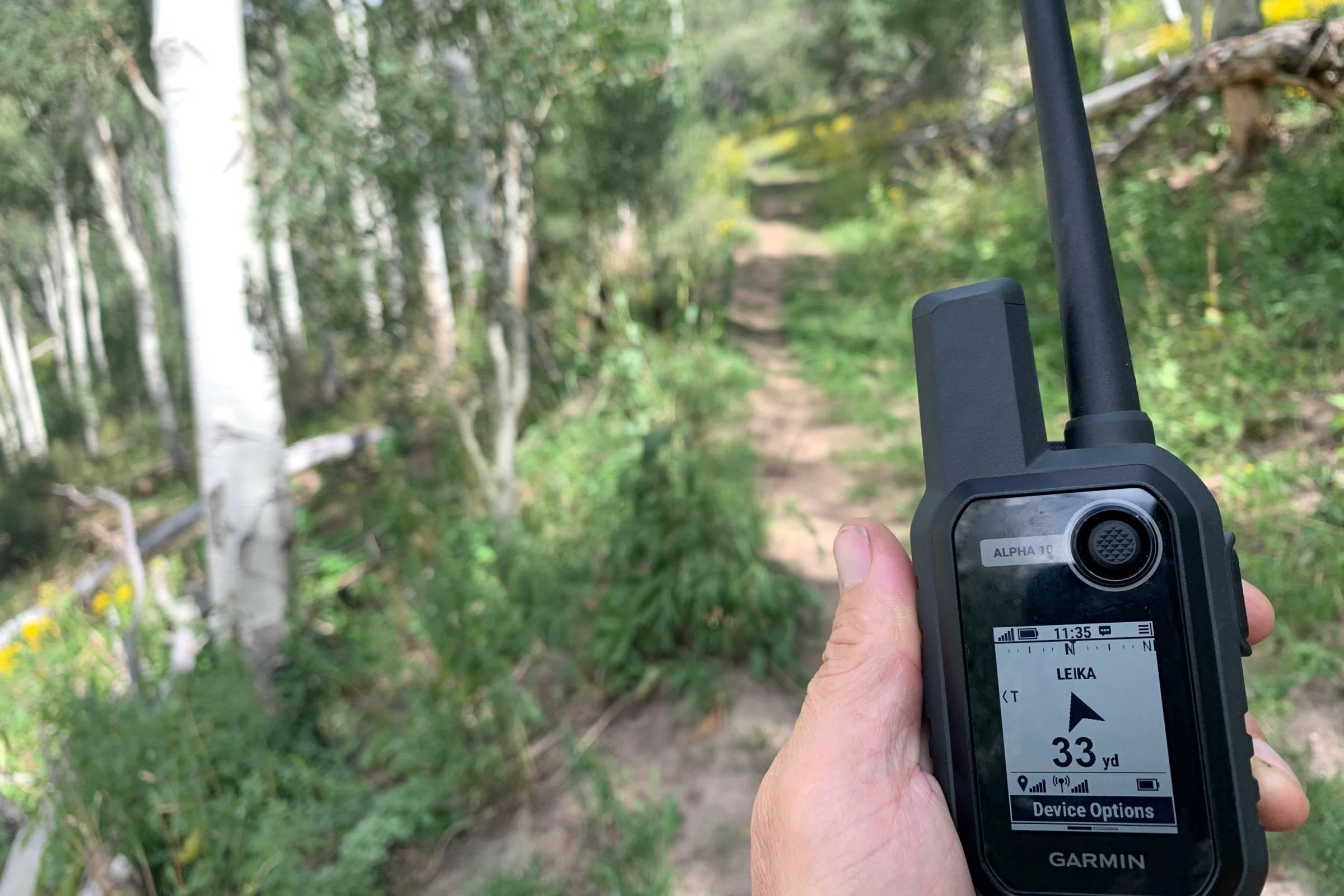 Garmin Alpha 10 gps dog tracker