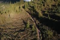 mountain biker riding down a trail