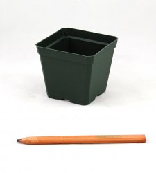 4 inch Square Greenhouse Pots - Each or Case