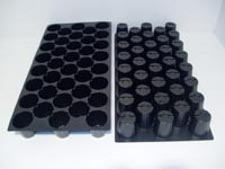 38 Round Cell Propagation Tray Case