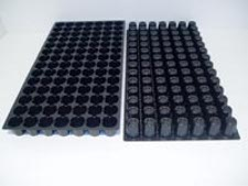 98 Round Cell Propagation Tray Case