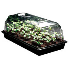 7 inch Propagation Humidity Dome Case of 25