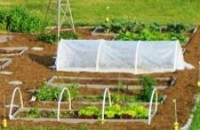 DuPont Pointbond Feather Weight  Row and Seed Bed Cover