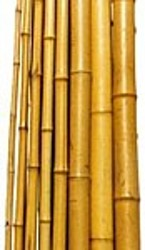 Natural Bamboo Garden Stakes / Canes Large sizes