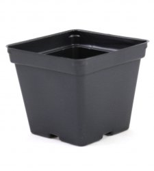 4.25 inch Black Square Greenhouse Pots - TOP