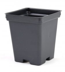 4.25 inch Deep Black Square Greenhouse Pots - P107D - Each or Case