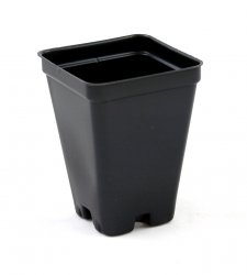 2.5 inch Deep Black Square Greenhouse Pots - P64 - Each or Case