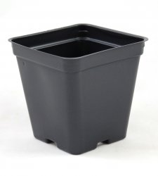 3.5 in. Black Square Greenhouse Pots - P86 - Each or Case