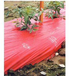 Red Plastic Mulch 1.0 mil Embossed